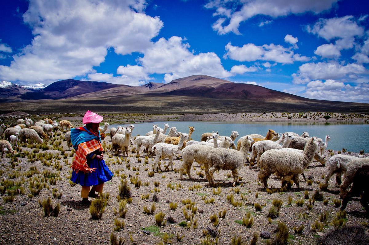 Λάικα: Οι απόγονοι των Ίνκα και οι παραδόσεις τους