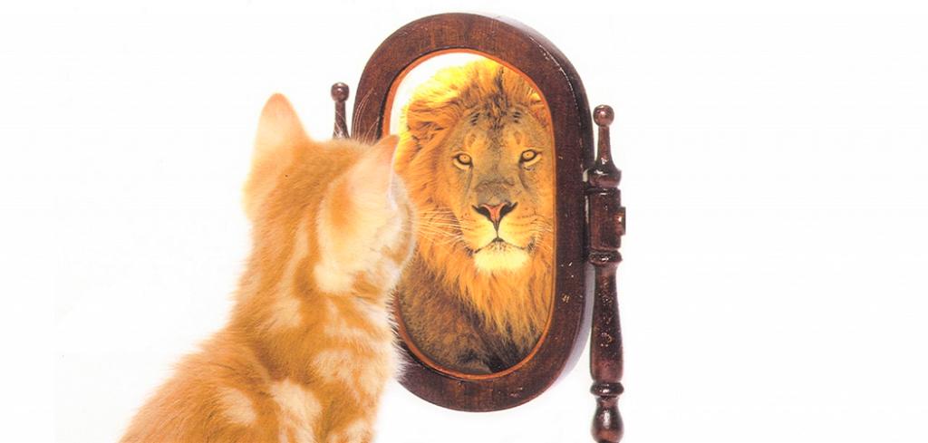 Από την παντοδυναμία στην αυτοεκτίμηση