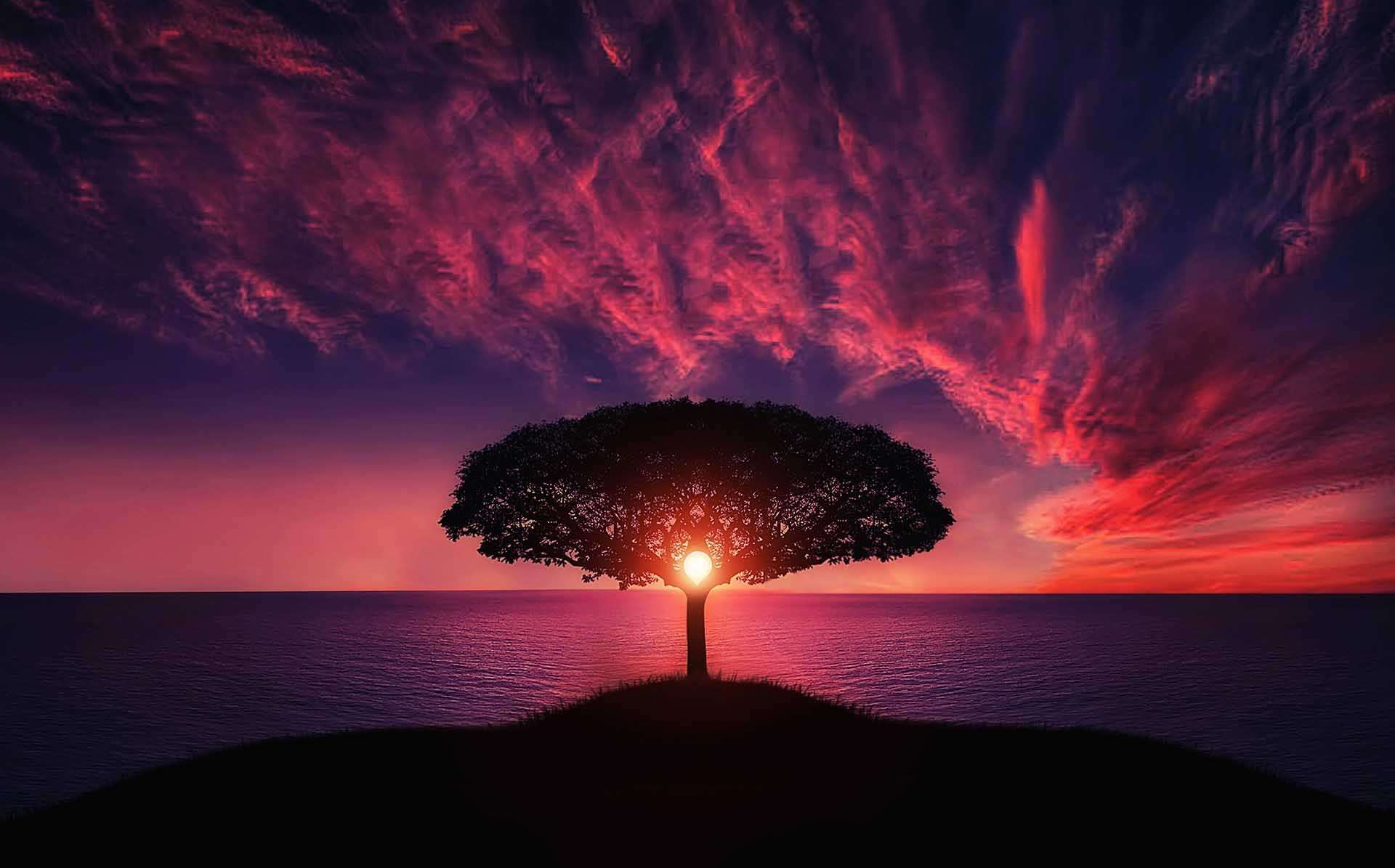 Θερινό Ηλιοστάσιο: Ο θρίαμβος της ψυχής